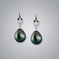 Pearl Earring with Natural Black South Sea 11.0-10.0 mm Pearls