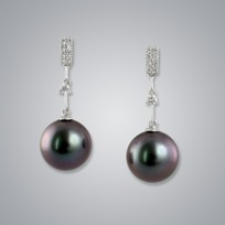 Pearl Earrings with Natural Black South Sea 12.0-11.0 mm Pearls