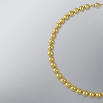 Pearl Necklace with Treated Golden Japanese Akoya 9.5-9.0 mm Pearls