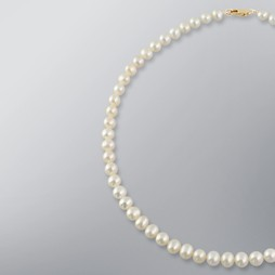 White Freshwater Pearl Strand Necklace 7.0-6.5mm, 18KY