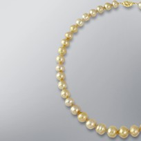 Pearl Necklace with Natural Golden South Sea 12.5-9.0 mm Pearls